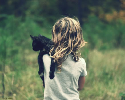 不乱于心,不困于情,不畏将来,不念过去